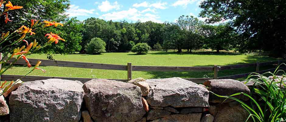 Open Paddock at Huckins Farm, Bedford, MA